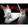 contrastfriday