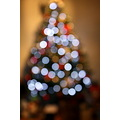 ChristmasTree Bokeh