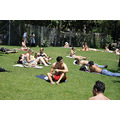 washingtonsquare newyork nyc park people sunbathing grass