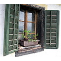 window wood green old forgoten glass