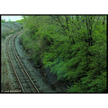 stlouis missouri us usa landscape traintrack vroom FeeFee bh 2008