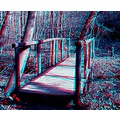 naglyph 3D stereo nature woods hiking bridge eerie