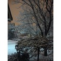 Taken at 11:31pm-2nd Snowstorm-Tonight.In the GTA-all over Ontario-On Tuesday,Feb.26,2013  By Lis...