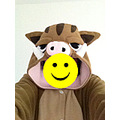 adult onesies kigurumi animal onesies animal pajamas animal costumes