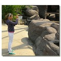 netherlands arnhem zoo people child nethx arnhx zoox chilx peopx