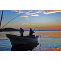 dawnfriday roncarlin baja california fishing