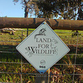 sign land wildlife perth hills littleollie