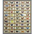 butterflyfriday cigarettecards