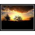 sun sunrise silhouette nature chedzoy somerset somersetdreams