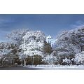 University Carillon Philippines UP campus Diliman Quezon City IR infrared