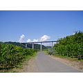 Vineyards bridge vine mosel mosela valey germany bicycle track