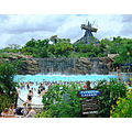 Hotels Near Typhoon Lagoon Water Park Orlando