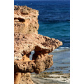 [Faces of Nature]  -I didn't see it well untill I got home and was surprised that the rocks in ...