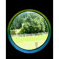 porthole country France summer grass lake meadow tree challenge 77