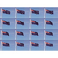 Fun friday patrioticfriday Flag New Zealand littleollie
