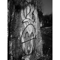 graffiti concrete wall black white