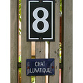 signsfriday signfph 8 numbersfph