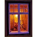 Kvidinge Bike Monark Skane Sweden Window Winterlight Januari 2014