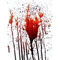 suicide gun blood headshot death red 2006