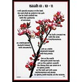 Bible verse scripture apple blossom branch sky flower