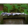 peacefriday worms jewish cemetery germany