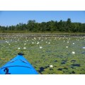 Kayaking..1   Shot through this summer.