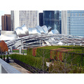 Chicago Gherry Millenium_Park