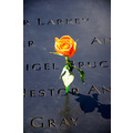 groundzero wtc newyorkcity nyc ny memorial engraving flower 911