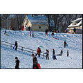 stlouis missouri us usa landscape snow hill feefee sledding bh 2007