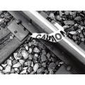 black white cautiontape railroad bw track scan