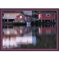 Newfoundland reflections