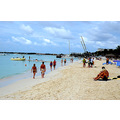 zuiderdam cruise palmbeach aruba beach people view
