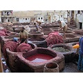 Tanneries of Fs