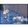icicle winter crowy e520