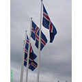 iceland reykjavik national holiday flags