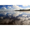 reflectionthursday muriwai beach